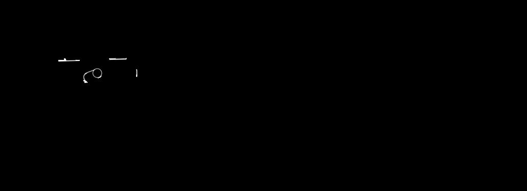 logo-hensen4